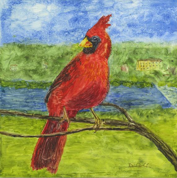 CardinalWEB
