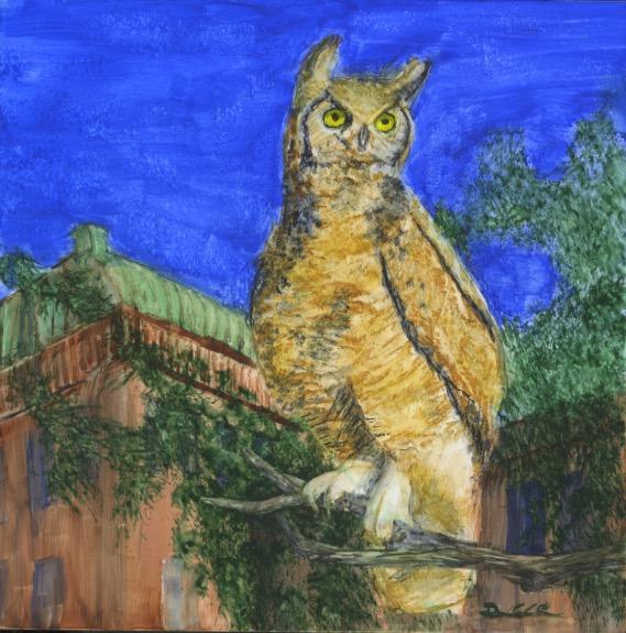 OwlCourtHouseWEB